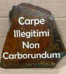 stone_carpe-illegitimi-1