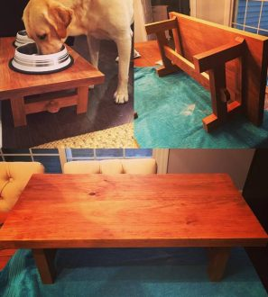 doggydiningtable
