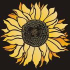 Profile photo of Sunflower Designs